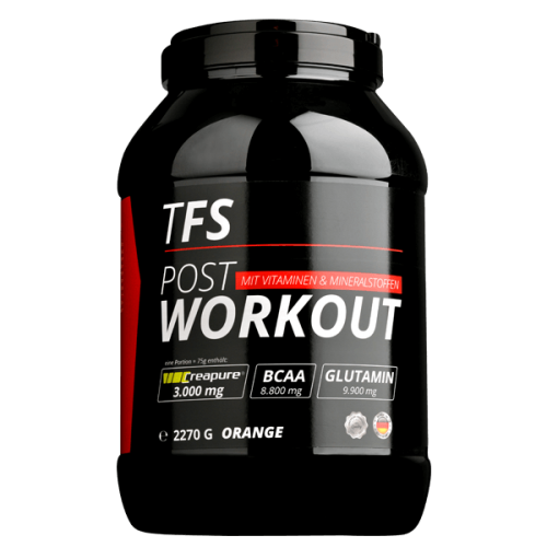 TFS Labs POST WORKOUT 2270g